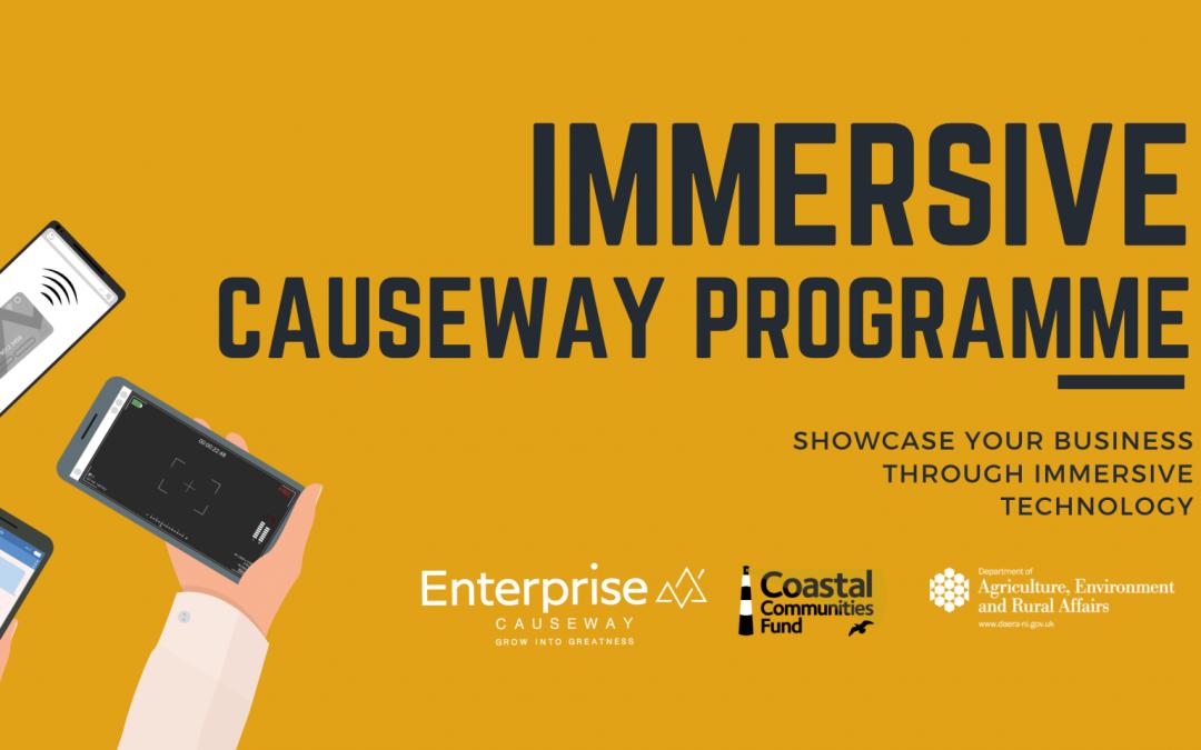 Immersive Causeway Programme